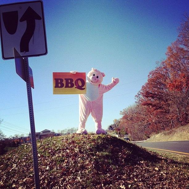 Highway 29, Virginia